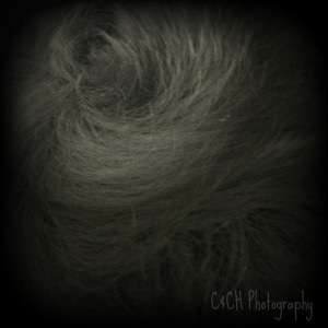 July 29 hair