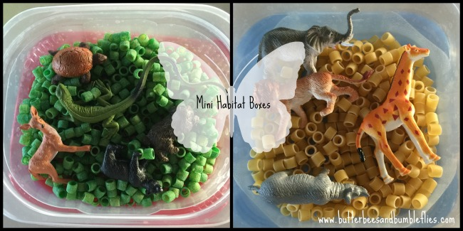 mini habitat boxes