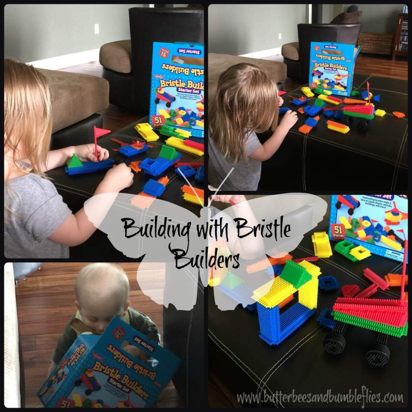 apr 9 building w bristle builders