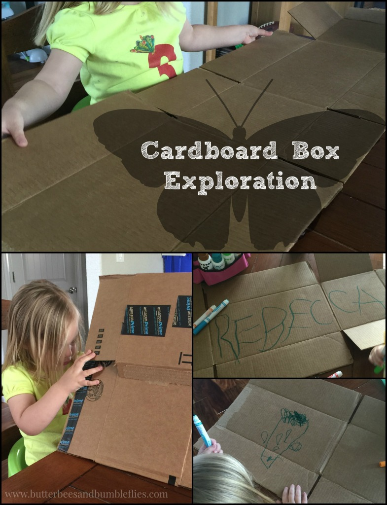 cardboard box exploration