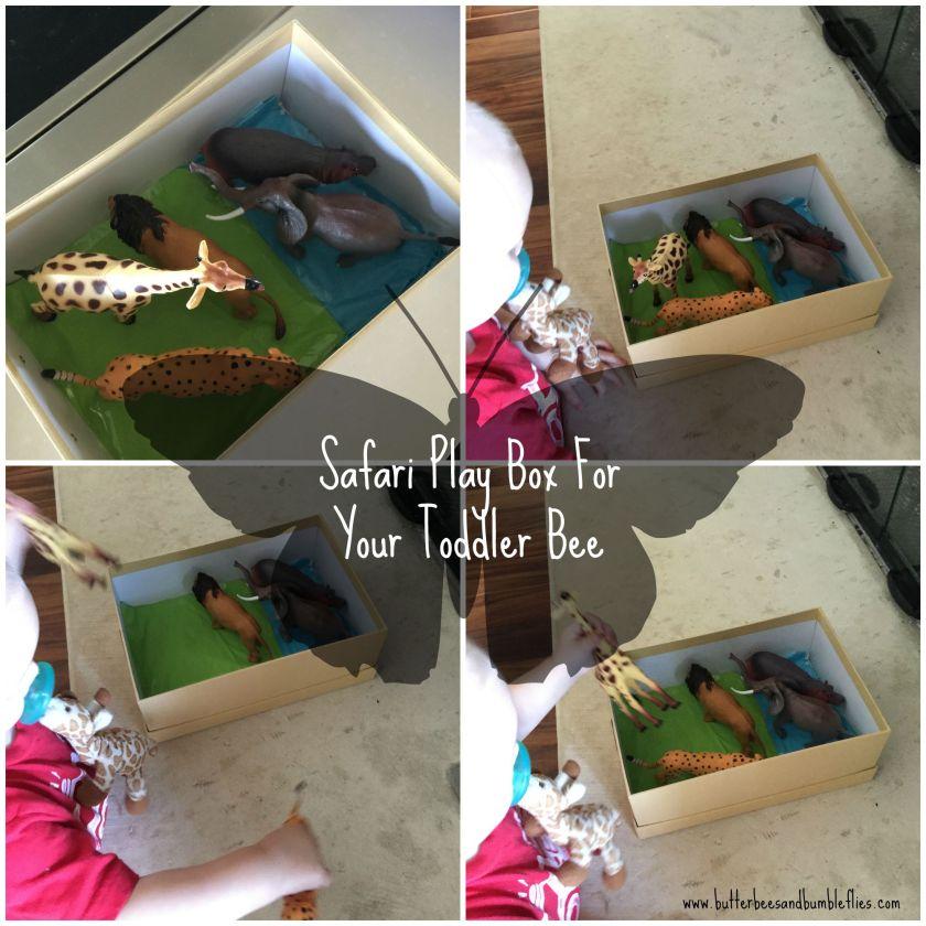 safari play box