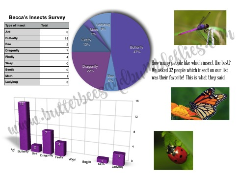insect survey