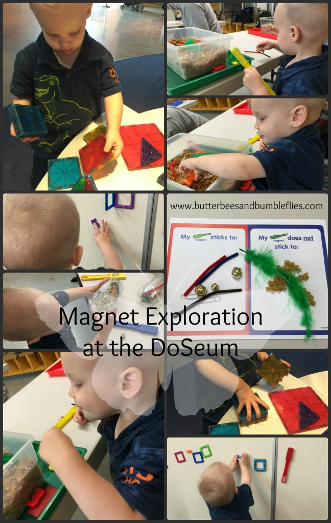 magnets at the dose