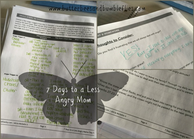 7 days to less angry mom